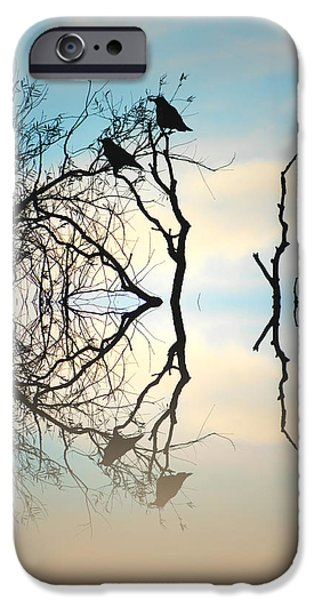 Reflecting Trees iPhone Cases - Crows iPhone Case by Sharon Lisa Clarke