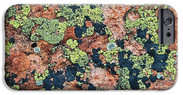 Killarney Provincial Park iPhone Cases - Crustose Lichens On Granite, Killarney iPhone Case by Mike Grandmailson