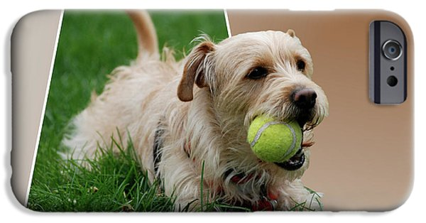 Puppy Digital Art iPhone Cases - Cruz My Ball iPhone Case by Thomas Woolworth