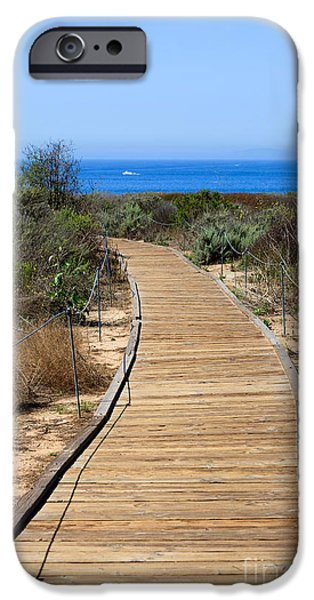 Crystal iPhone Cases - Crystal Cove State Park Wooden Walkway iPhone Case by Paul Velgos