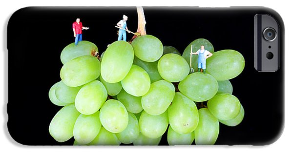 Table Wine Digital Art iPhone Cases - Cultivation on grapes iPhone Case by Paul Ge