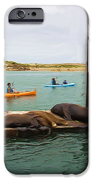 Curious About Sea Lions iPhone Case by Heidi Smith