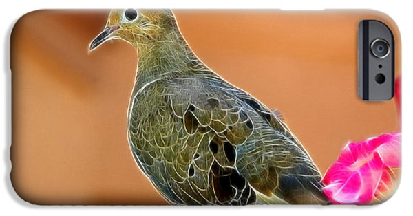 Fauna iPhone Cases - Curious Dove iPhone Case by Mariola Bitner