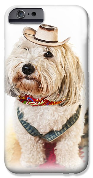 Cute dog in Halloween cowboy costume iPhone Case by Elena Elisseeva