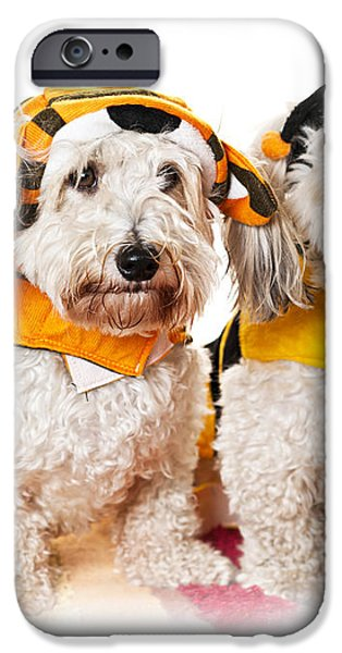 Cute dogs in Halloween costumes iPhone Case by Elena Elisseeva