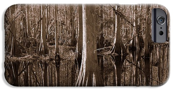 Reflection Of Trees iPhone Cases - Cypress Swamp Reflection in Sepia iPhone Case by Carol Groenen