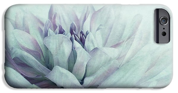 Close Up Floral iPhone Cases - Dahlia iPhone Case by Priska Wettstein