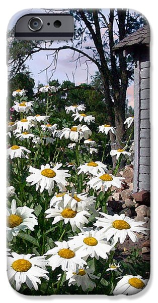 Shed iPhone Cases - Daises Delight II iPhone Case by Doug Kreuger