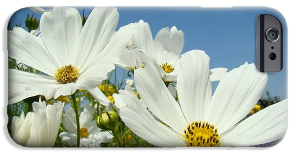 White Daisies iPhone Cases - DAISIES Flowers Art Prints White Daisy Flower Gardens iPhone Case by Baslee Troutman Fine Art Collections