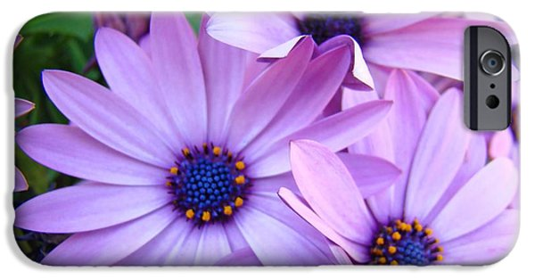 Floral Photographs iPhone Cases - Daisies Lavender Purple Daisy Flowers Baslee Troutman iPhone Case by Baslee Troutman Art Prints Collections