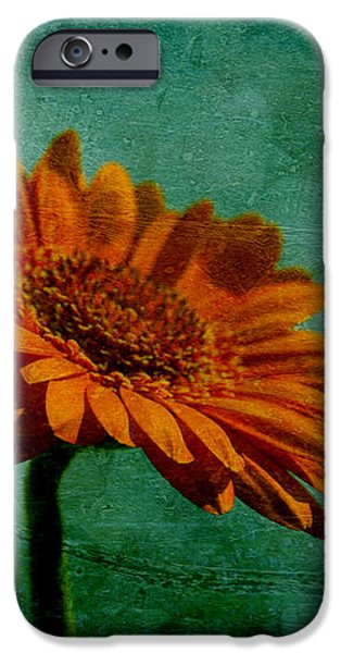 Daisy Daisy iPhone Case by Nomad Art And  Design