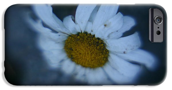 Best Sellers -  - Diy iPhone Cases - Daisy iPhone Case by Rylee Stearnes