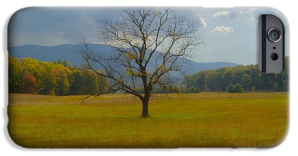 Tennessee Historic Site iPhone Cases - Dare to Stand Alone iPhone Case by Michael Peychich