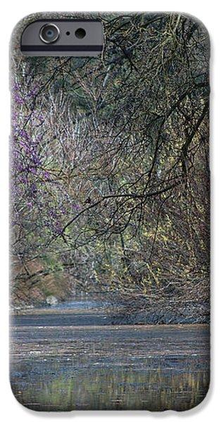 Davis Arboretum Creek iPhone Case by Agrofilms Photography