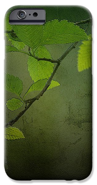 Daybreak Tiptoes In iPhone Case by Bonnie Bruno