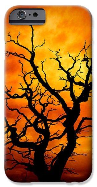 Weird iPhone Cases - Dead Tree iPhone Case by Meirion Matthias