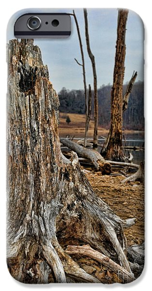 Overruns iPhone Cases - Dead wood iPhone Case by Paul Ward