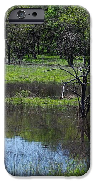 Deadwood Reflections iPhone Case by Robyn Stacey