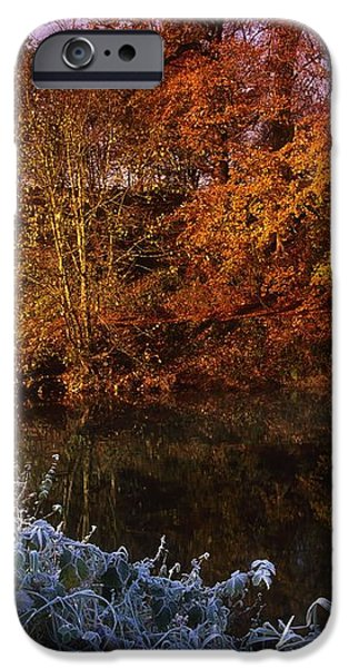Deciduous Woods, In Autumn With Frost iPhone Case by The Irish Image Collection