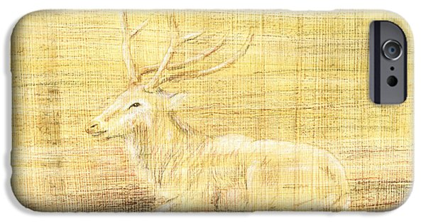 Papyrus iPhone Cases - Deer iPhone Case by Hakon Soreide