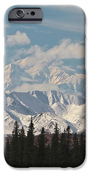 Denali in Broad Pass iPhone Case by Donna Quante