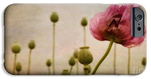 Capsule iPhone Cases - Depth Of Poppy Field iPhone Case by Priska Wettstein