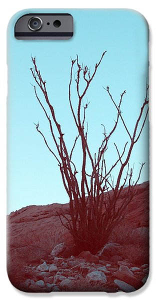 Field. Cloud iPhone Cases - Desert Plant iPhone Case by Naxart Studio