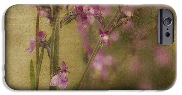 Rainy Day iPhone Cases - Dewdropped Garden iPhone Case by Bonnie Bruno