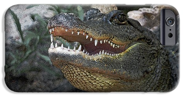 Alligator iPhone Cases - Did You Say Run iPhone Case by Ernie Echols