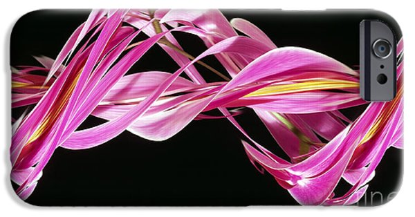 Designs In Nature iPhone Cases - Digital Streak Image Of An Orchid iPhone Case by Ted Kinsman
