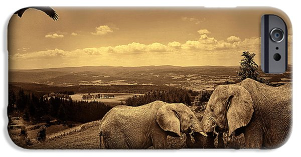 Elephants Photographs iPhone Cases - Dignified Rank iPhone Case by Lourry Legarde