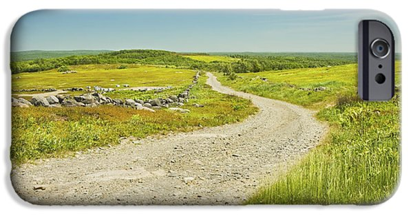 Rural Maine Roads iPhone Cases - Dirt Road Going Through Large Blueberry Field Maine iPhone Case by Keith Webber Jr