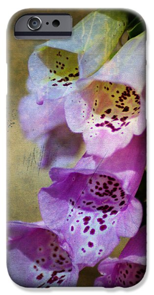 Dirty Belles iPhone Case by Bill Cannon