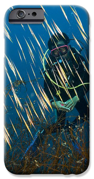 Japanese School iPhone Cases - Diver Amongst A School Of Shrimpfish iPhone Case by Matthew Oldfield