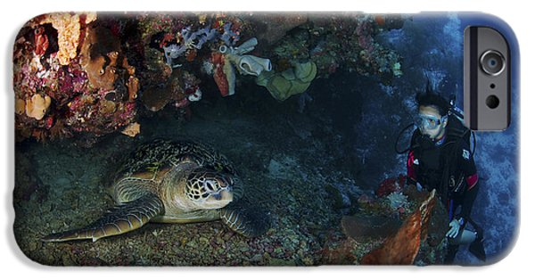Diver iPhone Cases - Diver And Sea Turtle, Manado, North iPhone Case by Mathieu Meur