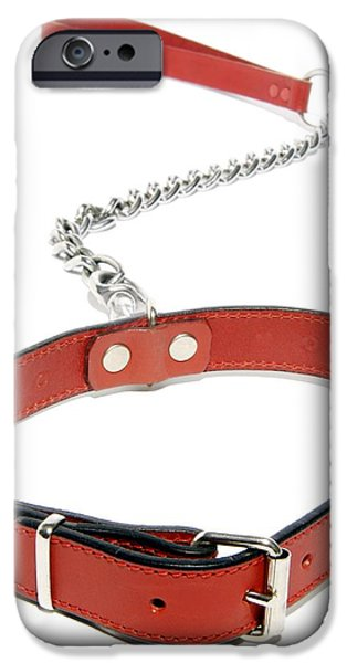 Pet Care iPhone Cases - Dog Collar iPhone Case by Johnny Greig