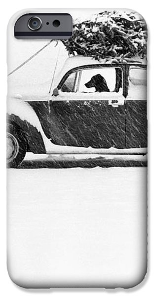 Dog in Car  iPhone Case by Ulrike Welsch and Photo Researchers