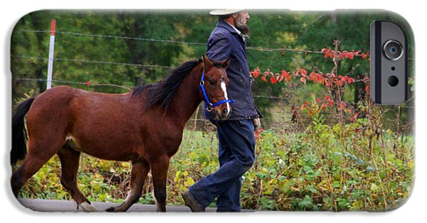 Amish iPhone Cases - Down a Country Road iPhone Case by Linda Mishler
