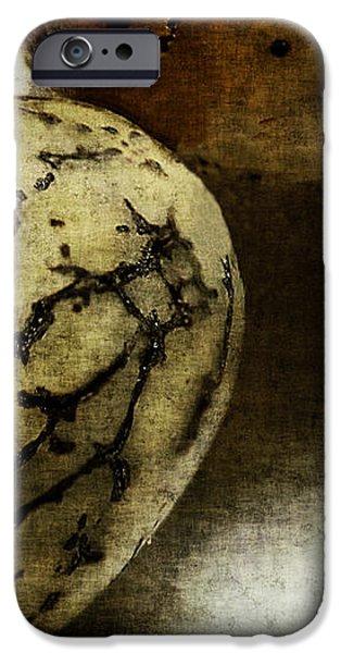 Dragon Eggs iPhone Case by Judi Bagwell