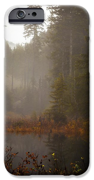 Fall iPhone Cases - Dream of Autumn iPhone Case by Mike Reid