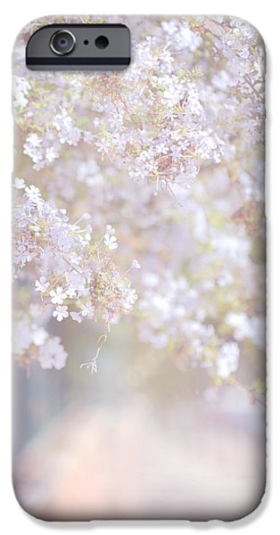 Dreaming of Spring iPhone Case by Jenny Rainbow