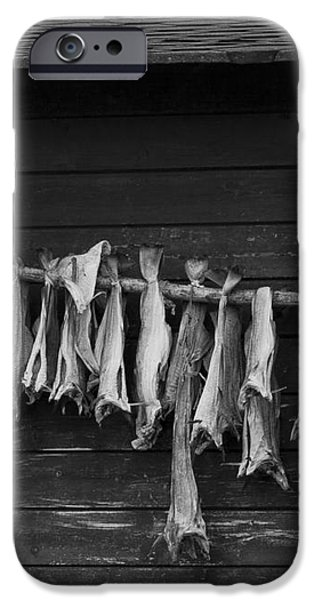 Dried Cod on a Line iPhone Case by Heiko Koehrer-Wagner