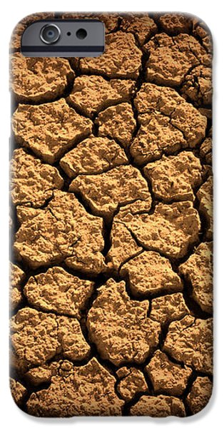 Dried Terrain iPhone Case by Carlos Caetano