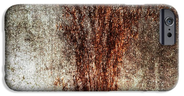 Abstract Digital iPhone Cases - Dried Weeds iPhone Case by Skip Nall