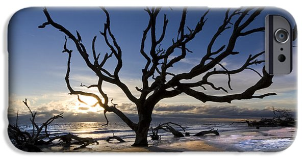 Tidal Photographs iPhone Cases - Driftwood Beach at Dawn iPhone Case by Debra and Dave Vanderlaan