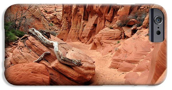 Nation iPhone Cases - Driftwood in Slot Canyon iPhone Case by Thomas R Fletcher