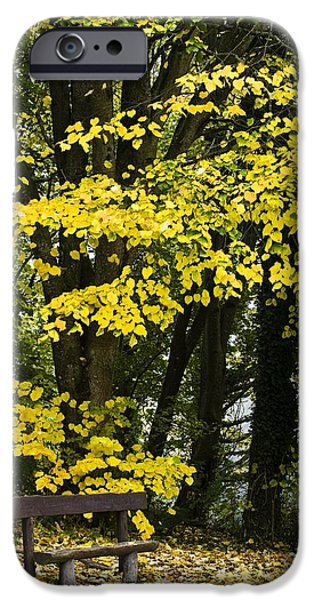 Dun Na Ri Forest Park, County Cavan iPhone Case by Peter McCabe