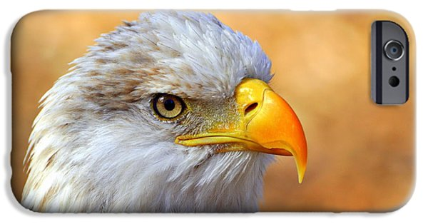 America iPhone Cases - Eagle 7 iPhone Case by Marty Koch