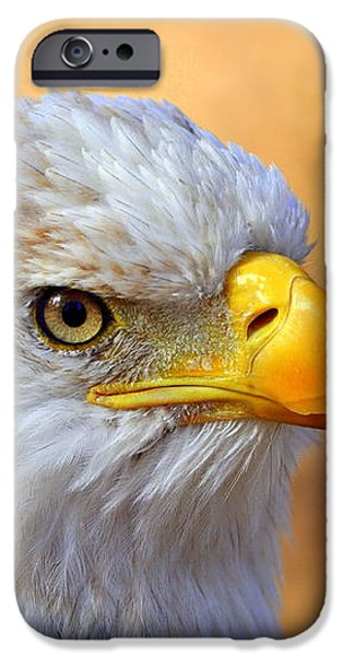 Eagle 7 iPhone Case by Marty Koch