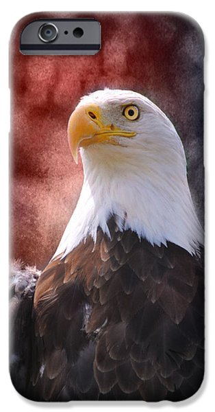 4th July Photographs iPhone Cases - Eagle I iPhone Case by Jai Johnson